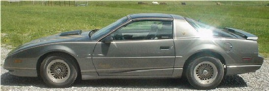 1991 Limited Edition Bandit 2 Pontiac Firebird